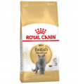 Royal Canin British Shorthair Adult 4 kg resim