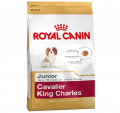 Royal Canin Cavalier King Charles Junior 1.5 kg resim