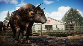 Far Cry 5 Deluxe Edition Xbox One Resimleri