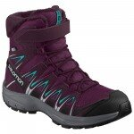 Salomon Xa Pro 3D Winter Ts Cswp J resim